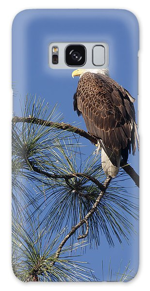 Bald Eagle Galaxy Case by Sally Weigand