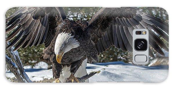 Bald Eagle Spread Galaxy Case