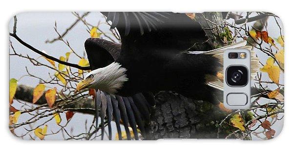 Bald Eagle Takes Flight Galaxy Case