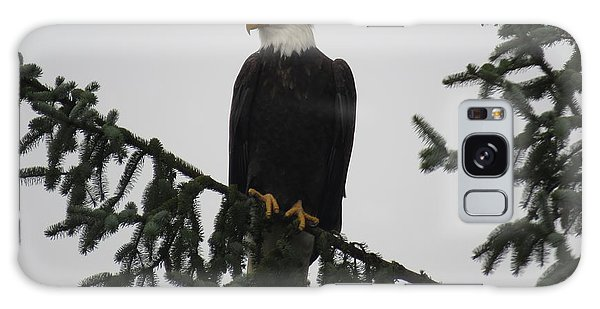 Bald Eagle Watching Galaxy Case
