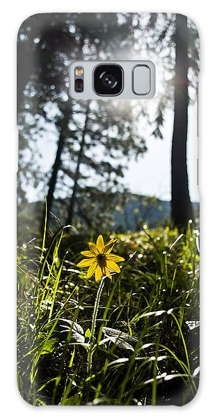 Balsamroot Galaxy Case