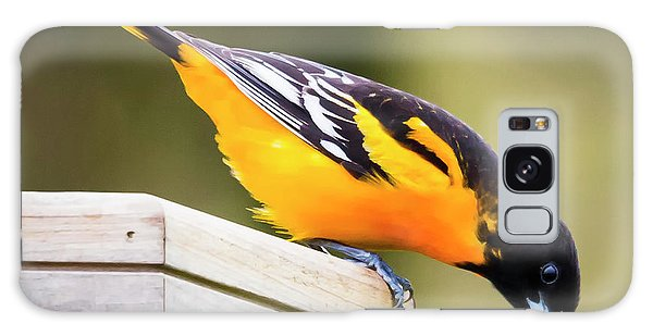 Galaxy Case featuring the photograph Baltimore Oriole About To Jump by Ricky L Jones