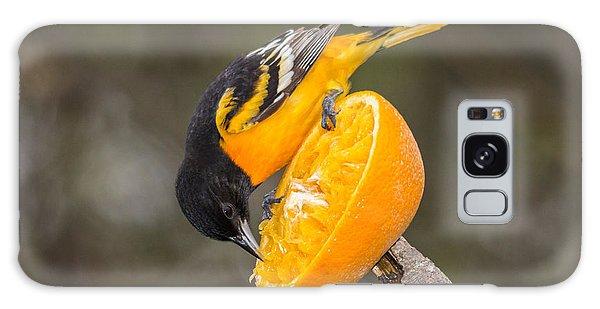 Baltimore Oriole On Orange Galaxy Case