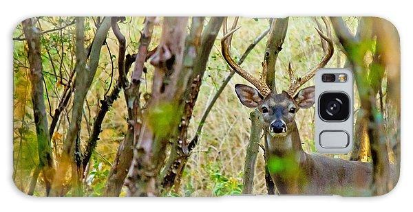 Bambi's Father Galaxy Case