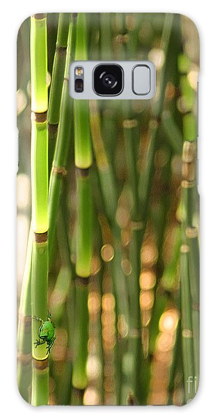 Bamboo Frog Galaxy Case