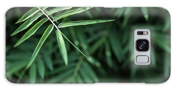 Bamboo Leaves Background Galaxy Case by Jingjits Photography