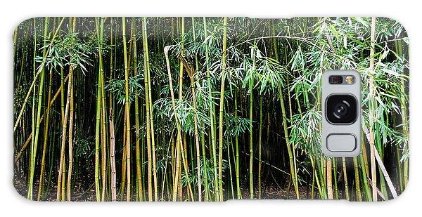 Bamboo Wind Chimes  Waimoku Falls Trail  Hana  Maui Hawaii Galaxy Case
