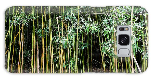 Bamboo Wind Chimes  Waimoku Falls Trail  Hana  Maui Hawaii Galaxy Case