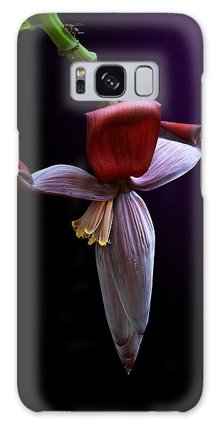 Banana Flower Portrait Galaxy Case