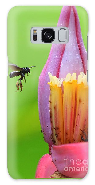 Banana Pollinator   Galaxy Case by Irina Hays