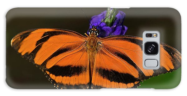 Banded Orange Butterfly Galaxy Case
