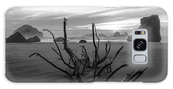 Bandon Beach Tree Galaxy Case
