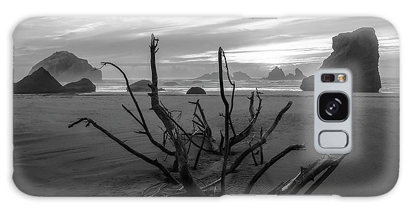 Bandon Beach Tree Galaxy Case