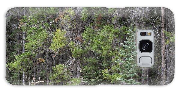 Banff Canada Elk Woodland Landscape Galaxy Case by Andrea Hazel Ihlefeld