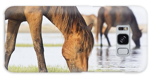 Banker Horses On Tidal Flat Galaxy Case