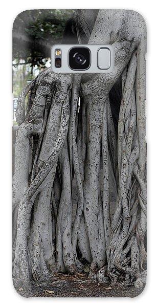 Banyan Tree, Maui Galaxy Case