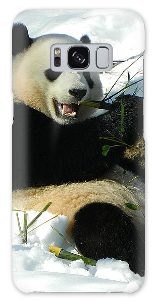 Bao Bao Sittin' In The Snow Taking A Bite Out Of Bamboo2 Galaxy Case