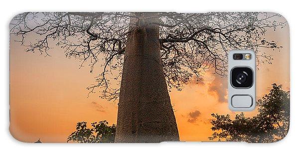 Baobab Galaxy Case