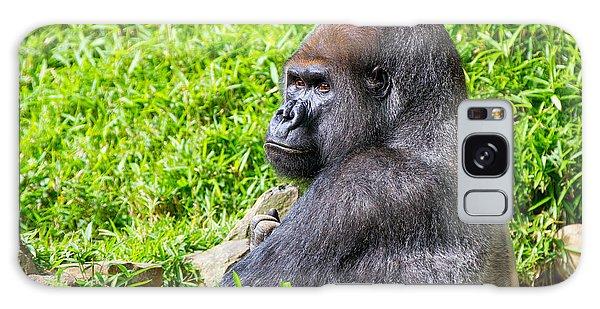 Baraka - Western Lowalnd Silverback Gorilla Galaxy Case