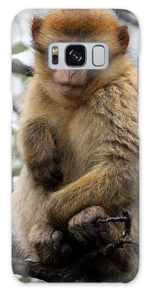 Galaxy Case featuring the photograph Barbary Ape by Ramona Johnston