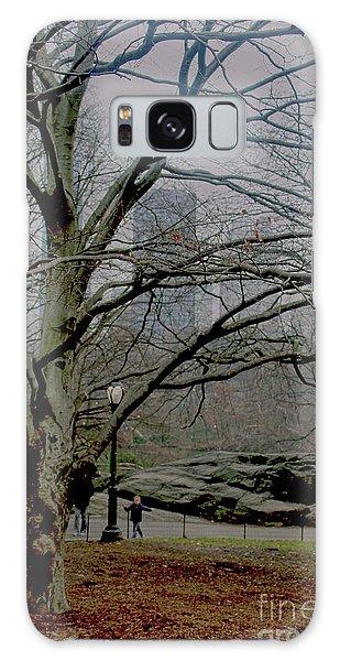 Bare Tree On Walking Path Galaxy Case by Sandy Moulder