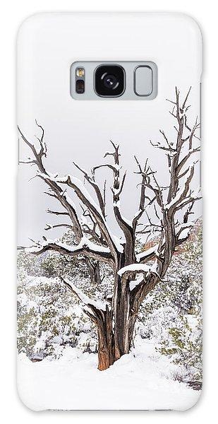 Bark And White Galaxy Case by Laura Pratt