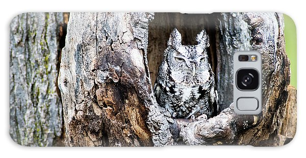 Screech Owl Galaxy Case