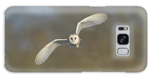 Barn Owl Hunting In Worcestershire Galaxy Case