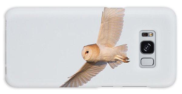 Barn Owl Hunting Galaxy Case
