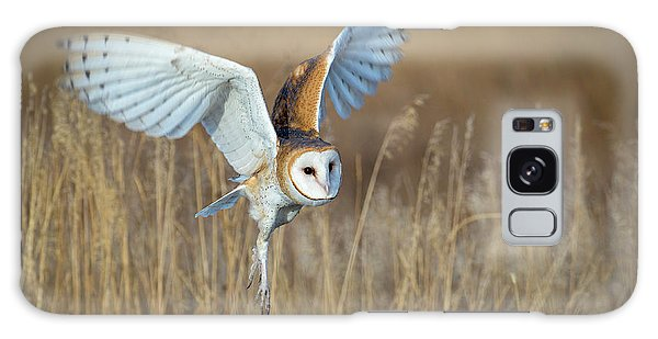 Barn Owl In Grass Galaxy Case