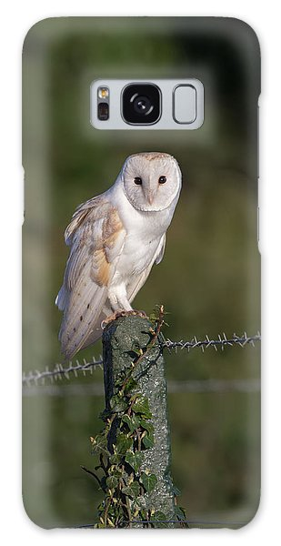 Barn Owl On Ivy Post Galaxy Case