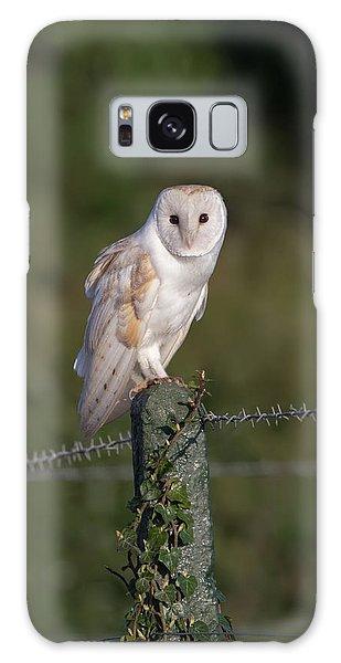 Barn Owl On Ivy Post Galaxy Case