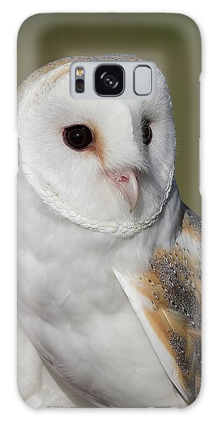 Barn Owl Portrait - Winged Ambassadors Galaxy Case