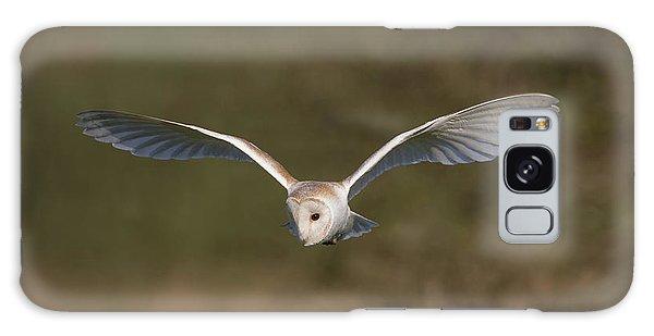 Barn Owl Quartering Galaxy Case