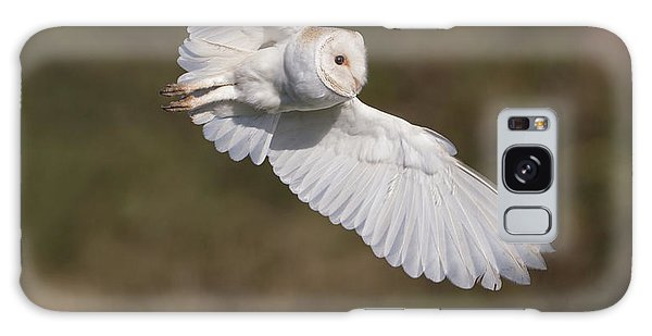 Barn Owl Wings Galaxy Case