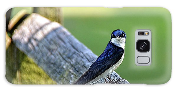 Barn Swallow Looking Angry Galaxy Case