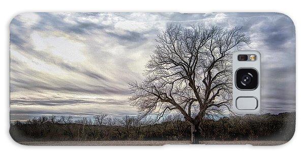 Baron Tree Of Winter Galaxy Case
