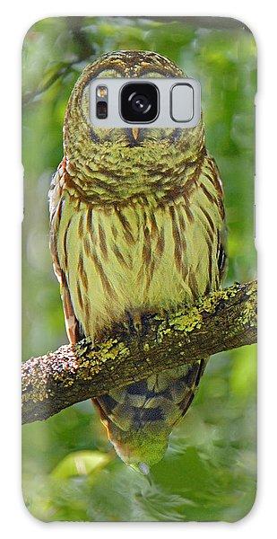 Barred Owl Galaxy Case by Alan Lenk