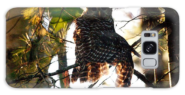 Barred Owl At Sunrise Galaxy Case by Brent L Ander