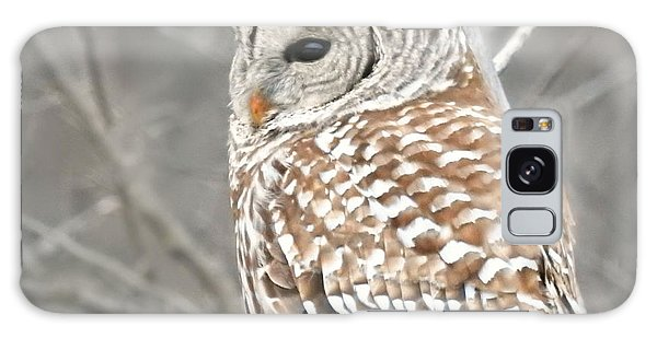 Barred Owl Close-up Galaxy Case by Kathy M Krause