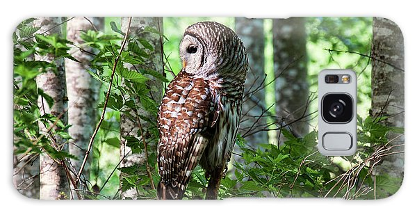 Barred Owl In The Alder Tree Forest Galaxy Case