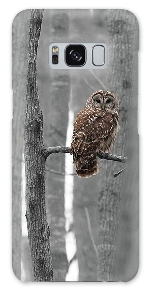 Barred Owl In Winter Woods #1 Galaxy Case