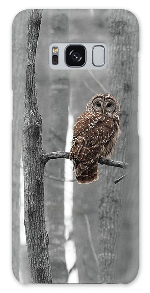 Barred Owl In Winter Woods #1 Galaxy Case