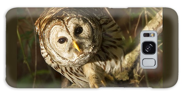 Barred Owl Peering Galaxy Case