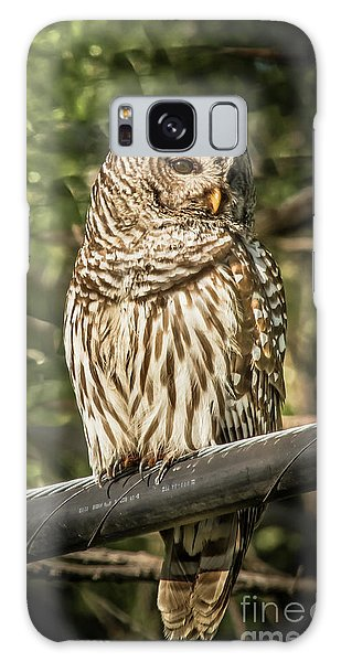 Barred Owl Galaxy Case by Robert Frederick