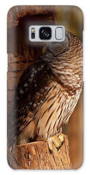 Barred Owl Sleeping In A Tree Galaxy Case by Chris Flees