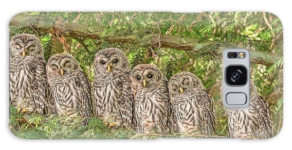 Barred Owlets Nursery Galaxy Case
