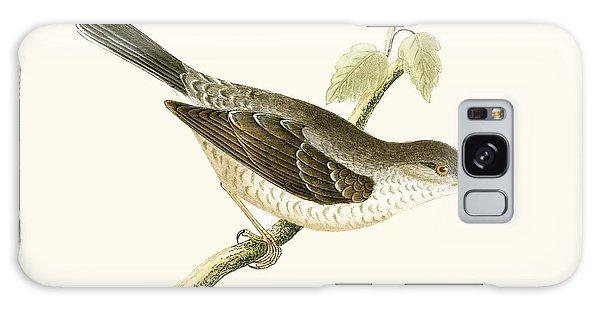 Song Bird Galaxy Case - Barred Warbler by English School