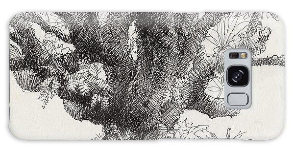 Barringtonia Tree Galaxy Case