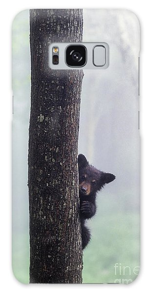 Bashful Bear Cub - Fs000230 Galaxy Case